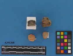 Figurine Fragments - Reptile