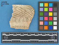 Rimsherds, also Type Sherd Unnamed Type (Fort Yates Rim Form), and La Roche Decorated Lip, Iona S-Rim