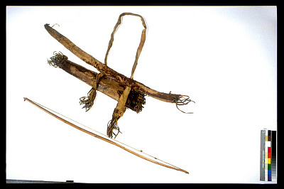 Bow And Quiver