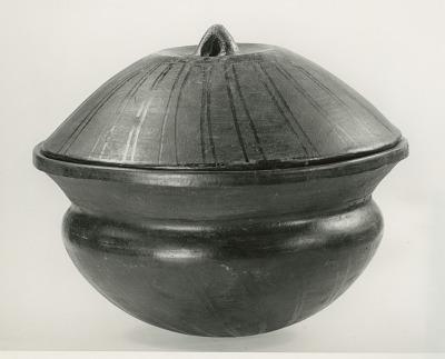 Lid Bowl 2