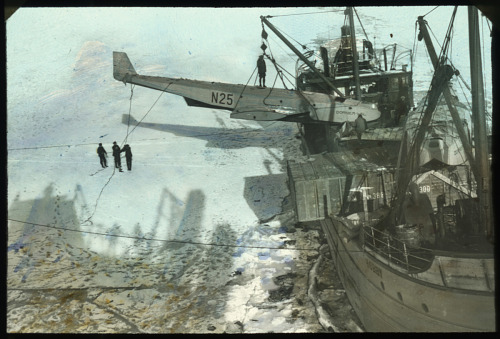 Amundsen and Ellsworth 1925 Arctic Expedition Glass Plates Dietrichson