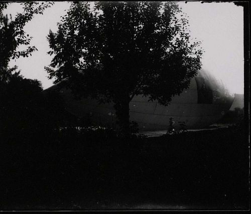 Side view, partially obscured by large tree, of inflated airship envelope showing diamond fabric patch.