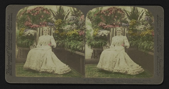 image for Mrs. McKinley in the Conservatory of the Executive Mansion, Washington