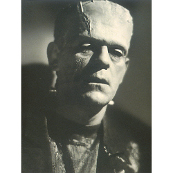 Frankenstein - Novel to Film - Film to Graphic Art & Classic Halloween Costume