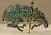 images for Metallic Beetle-thumbnail 4