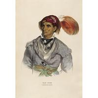 Tah-Chee - A Cherokee Chief