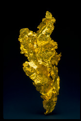 Gold Specimens of the Mother Lode
