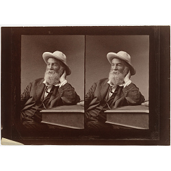 Walt Whitman: Examining Portraiture