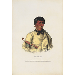 Pee-che-kir - A Chippewa Chief