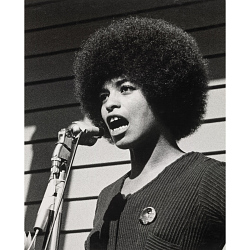 How Did Angela Davis Inspire a Movement?