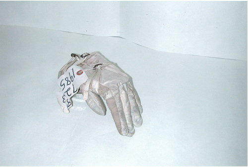 Glove, A1-C, Left, Eisele
