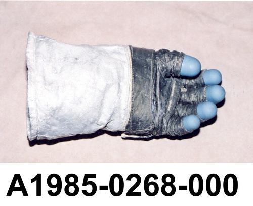 Glove, EV, Left, Engle, Training