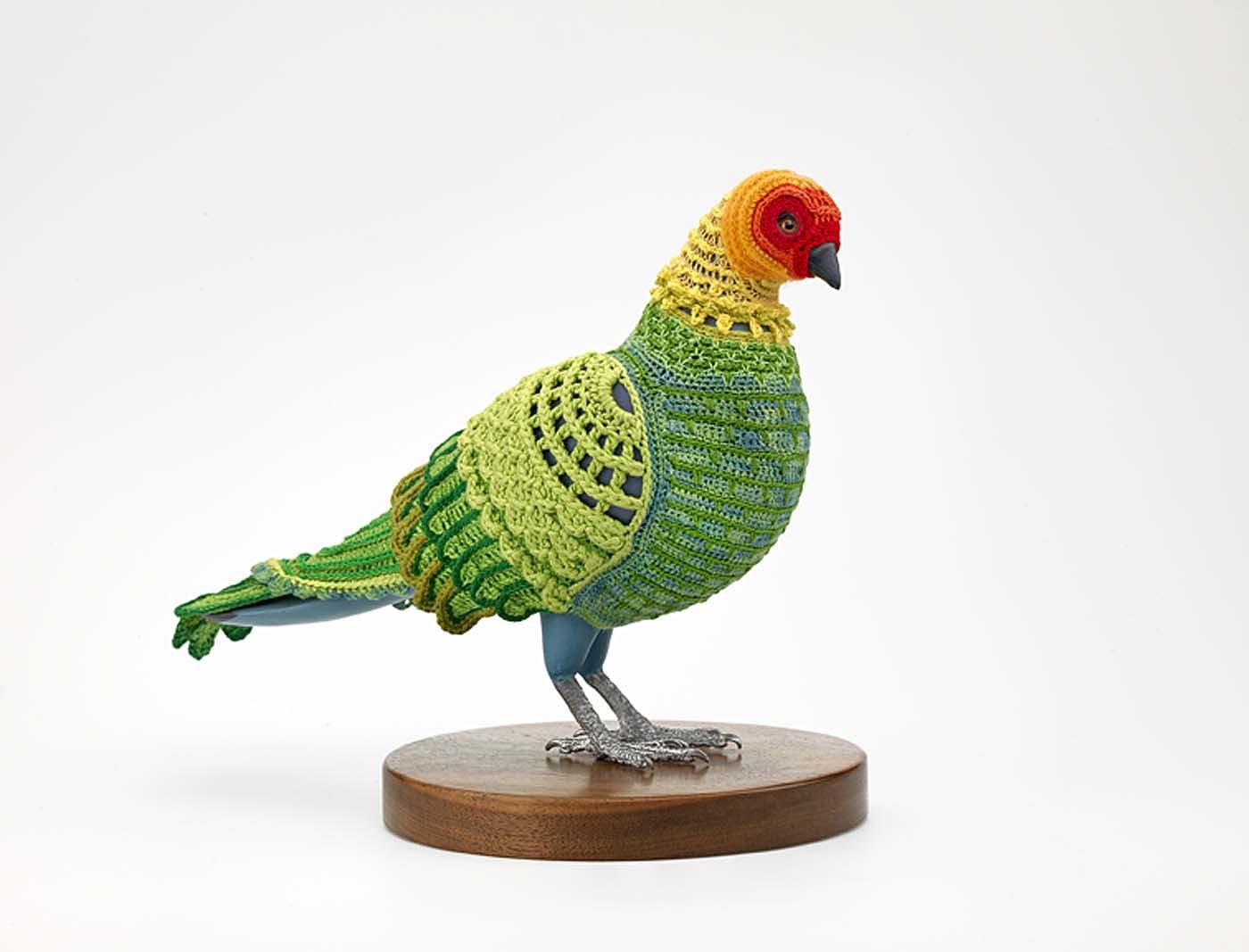 images for Biodiversity Reclamation Suit: Carolina Parakeet