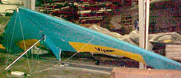 Delta Wing Phoenix Viper 175