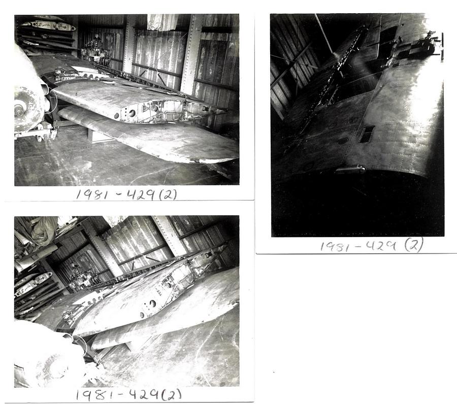 Wings, Pair, Nakajima B6N2 Tenzan (Heavenly Mountain) JILL