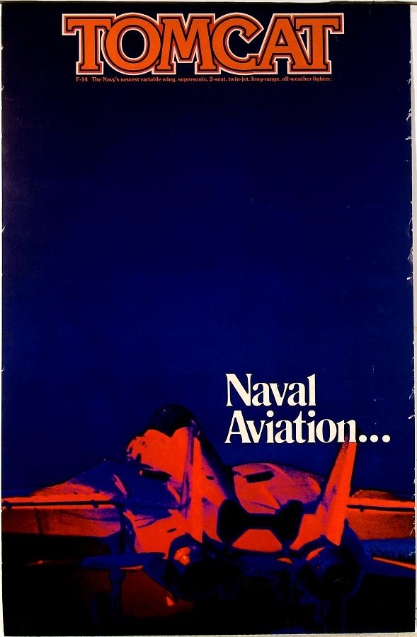 Tomcat Naval Aviation