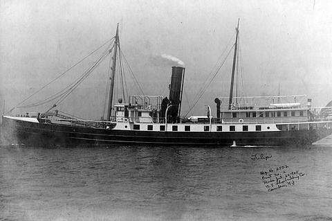 USLHS tender Tulip, built 1908