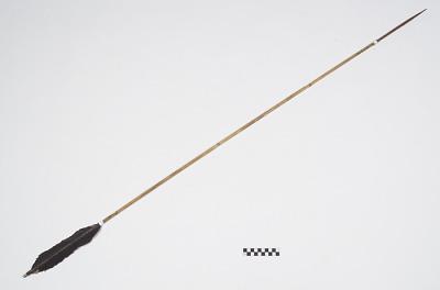 Arrow for fishing