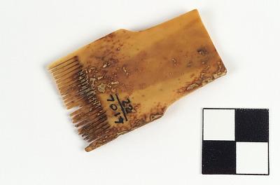Sinew comb