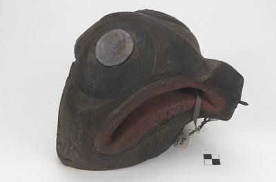 Mask representing a horsefly