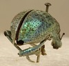 images for Metallic Beetle-thumbnail 3
