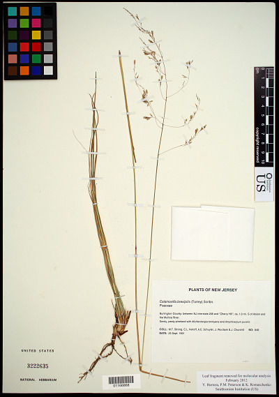EDAN Search Results | Page 7099 | Smithsonian Institution