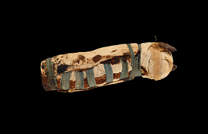 images for Mummy Of Cat, In Mummy Wrappings-thumbnail 2