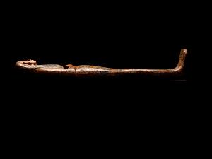 images for Inner Coffin & Lid Of Tentkhonsu-thumbnail 6