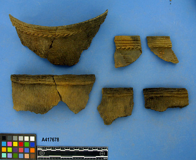 Rims And Bodysherds
