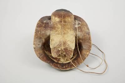 Turtle Shell Resonator