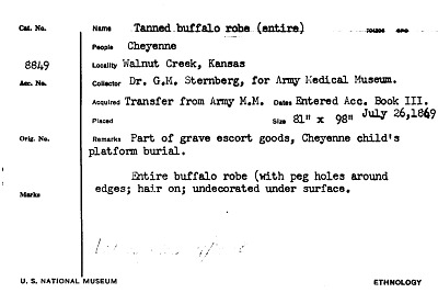 Tanned Buffalo Robe (Entire)
