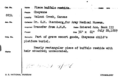 Piece Buffalo Rawhide