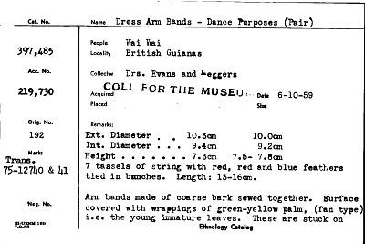 Dress Arm-Bands Dance Purposes