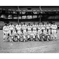 Image of Homestead Grays