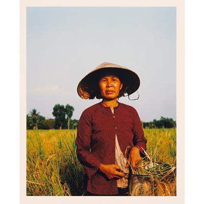 Vietnam 15 Years Later