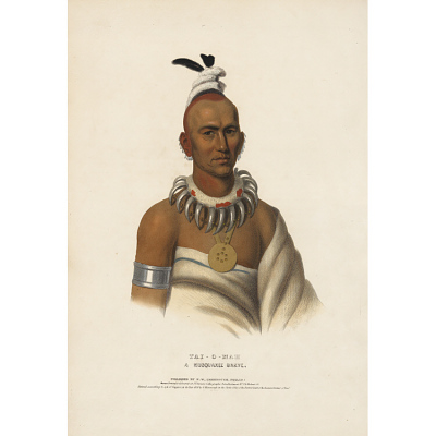 Tai-o-mah - A Musquakee Brave