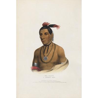 Wa-kawn - A Winnebago Chief