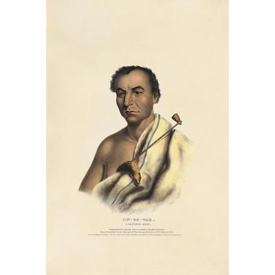 On-ge-wae - A Chippewa Chief