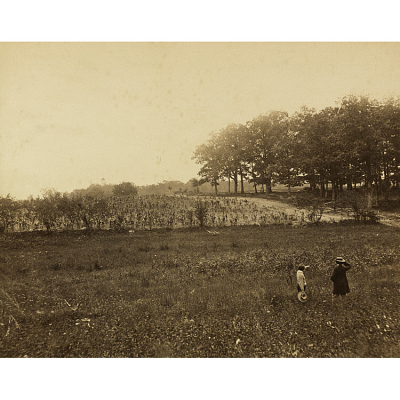 Mathew Brady at Gettysburg