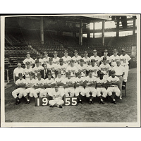 Image of Brooklyn Dodgers 1955