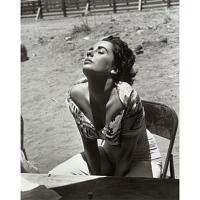 Image of Elizabeth Taylor