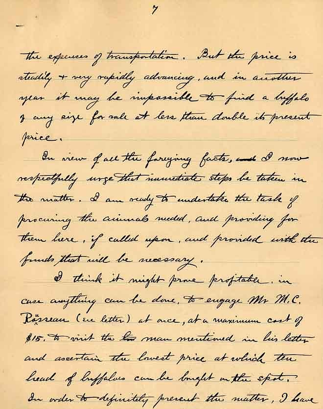 William Temple Hornaday Letter - Dec 2, 1887 - Page 7
