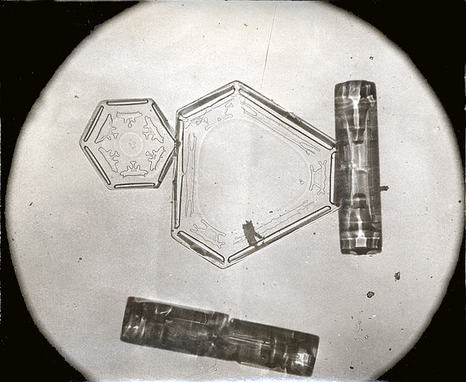 Plates (bottom and right) and Columns (left and middle) Snowflakes