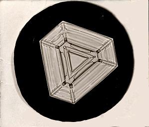 Plate Snowflake