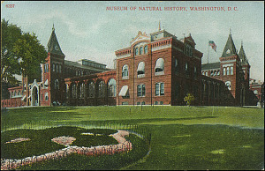 Postcard of the National Museum #6357, c. 1907-1910, Unknown, Courtesy of a private collector, No copy available at the Smithsonian Institution Archives, ai2.jpg