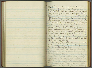 William Dall Diary, Aurora - Feb 11, 1867 - Page 4