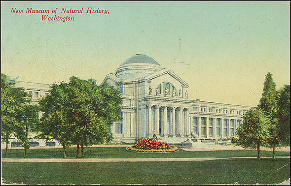 Postcard of the New Museum of Natural History, c. 1911
