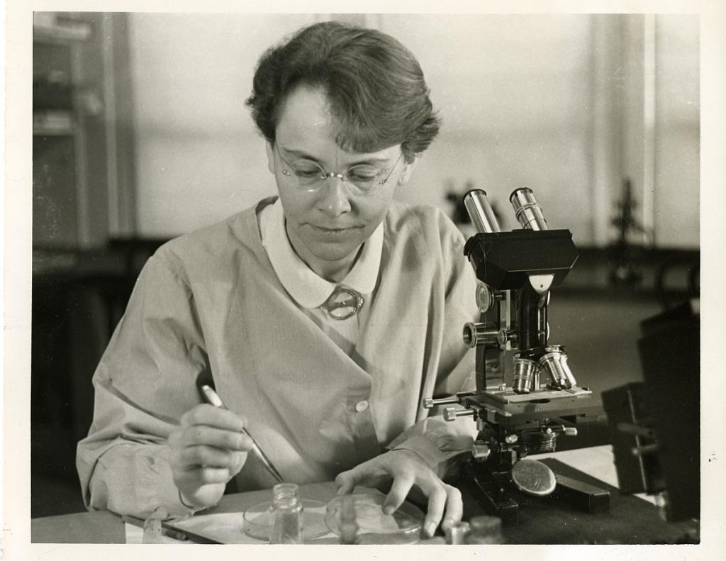 image for Barbara McClintock (1902-1992)