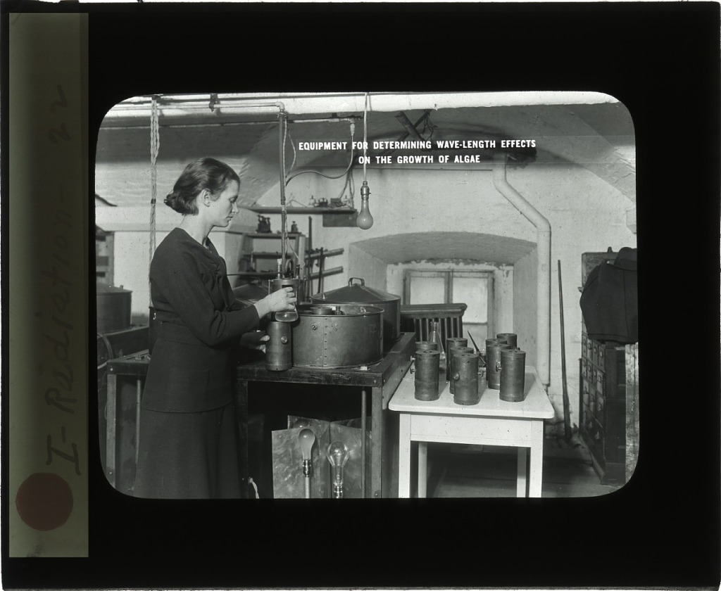 image for Florence E. Meier in the Division of Radiation and Organisms Laboratory