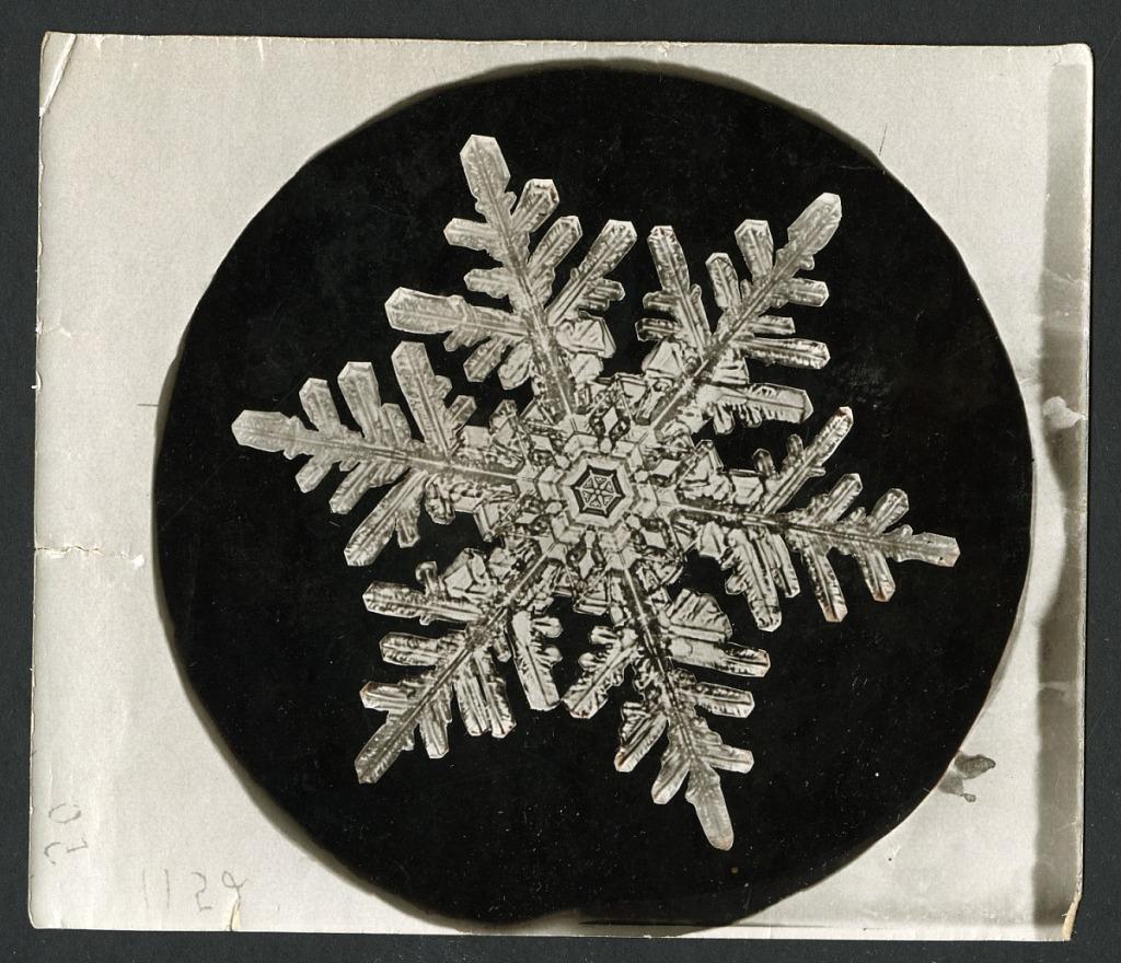 image for Wilson Bentley's Snowflake 1152, c. 1890